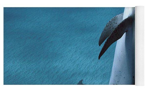 Atlantic Spotted Dolphin  Yoga Mat by Hiroya Minakuchi