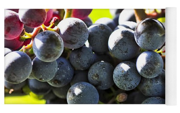 Purple Grapes Yoga Mat