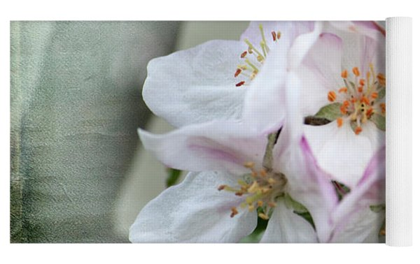 Apple Blossoms From My Hepburn Garden Yoga Mat by Chris Armytage