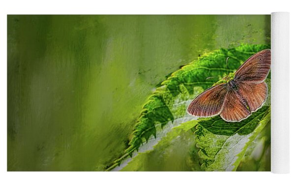 Brown Butterfly #h6 Yoga Mat by Leif Sohlman