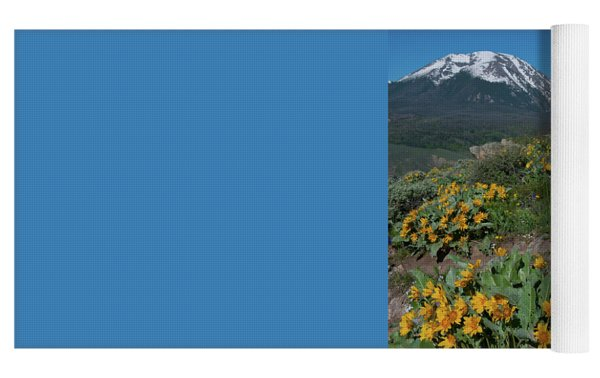 Colorado Spring Wildflower And Mountain Portrait Yoga Mat by Cascade Colors