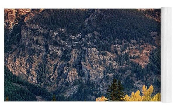 Cottonwoods Fir Trees Fall Color Grand Tetons Nat Yoga Mat by Dave Welling