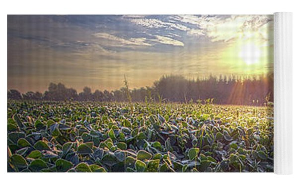 Every Sunrise Needs Its Day Yoga Mat by Phil Koch
