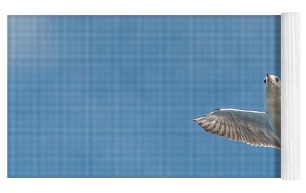 Flying Seagull Yoga Mat by Pradeep Raja PRINTS