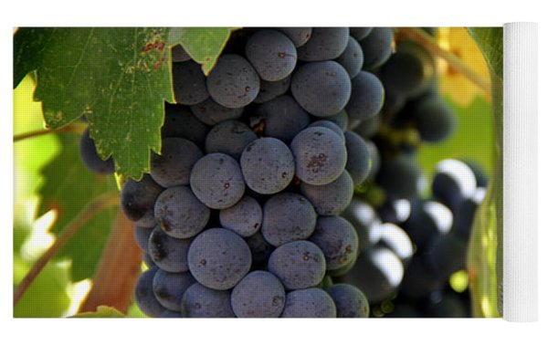 Grapes Yoga Mat by Nancy Ingersoll