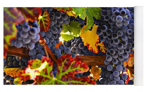 Grapes On Vine In Vineyards Yoga Mat