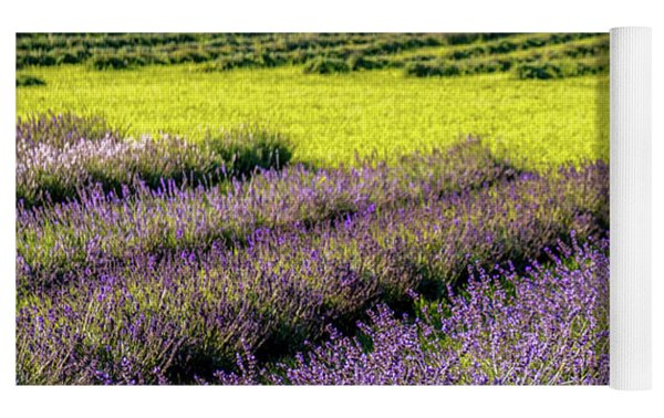 Lavender Fields Forever Yoga Mat by Kendall McKernon