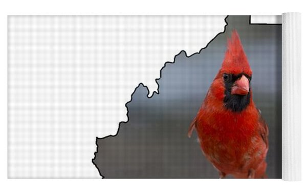 Red Cardinal Looking For Food Yoga Mat by Dan Friend