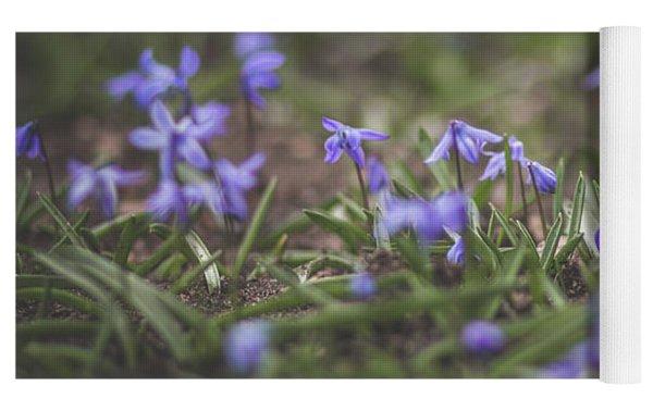 Spring Flowers - Scilla Yoga Mat by Viviana Nadowski