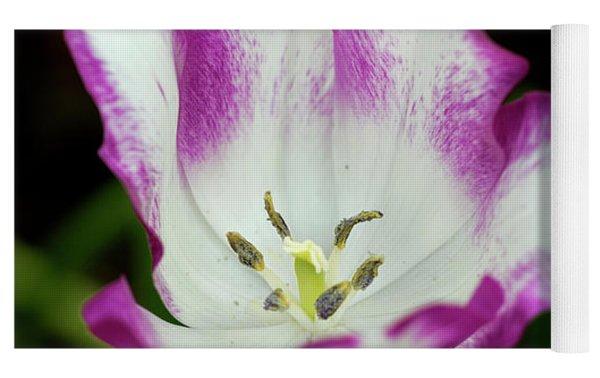 Tulip Flower Yoga Mat by Pradeep Raja Prints