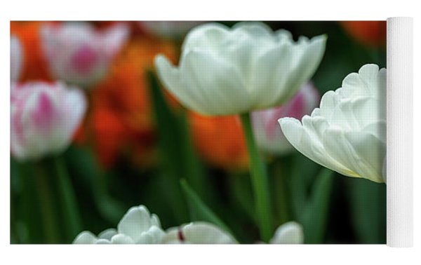 Tulip Flowers Yoga Mat by Pradeep Raja Prints