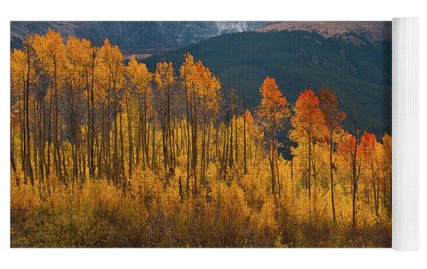 Vivid Autumn Aspen And Mountain Landscape Yoga Mat by Cascade Colors