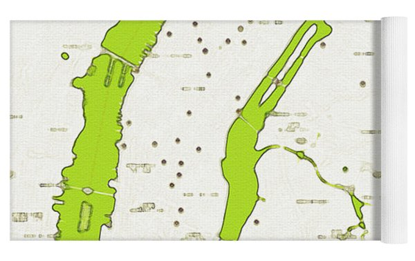 Watercolor Modern Map Of Upper New York Yoga Mat by Celestial Images