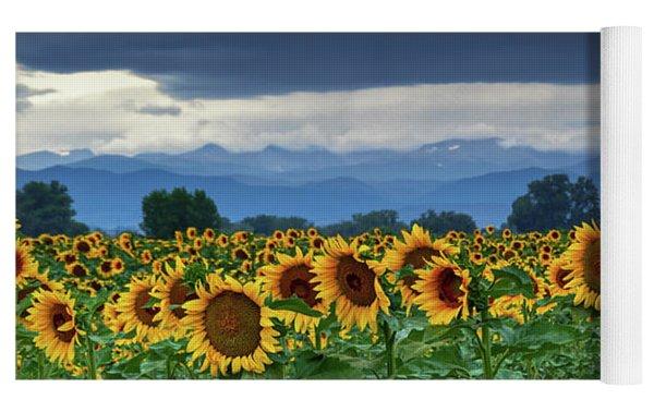 Sunflowers Under A Stormy Sky Yoga Mat by John De Bord