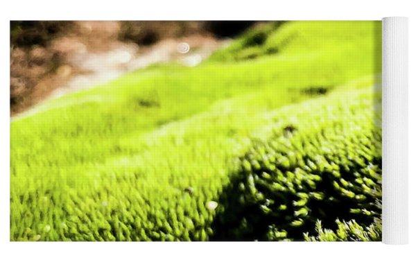 Tiny Forest 1 Yoga Mat by Atousa Raissyan