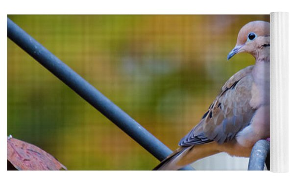 Mourning Dove Yoga Mat by Robert L Jackson