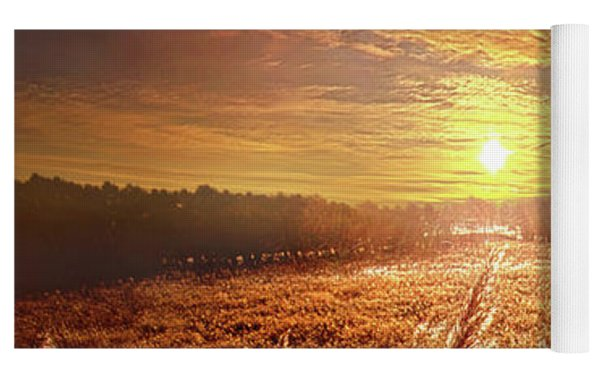 Once Upon A Waking Dream Yoga Mat by Phil Koch