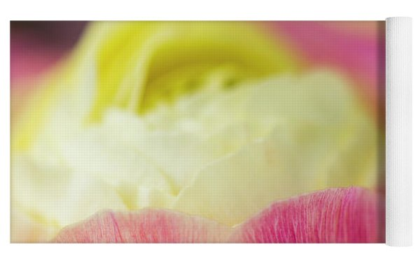 Ranunculus Close Yoga Mat by Robert Potts