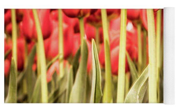 Red Tulip Field In Portrait Format. Yoga Mat by Anjo Ten Kate