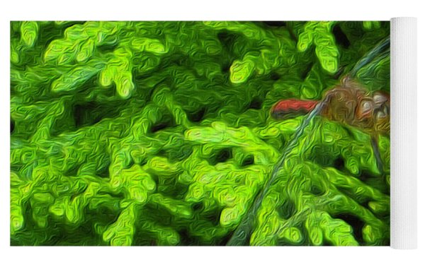 Scarlet Darter Male Dragonfly Yoga Mat by Rockin Docks