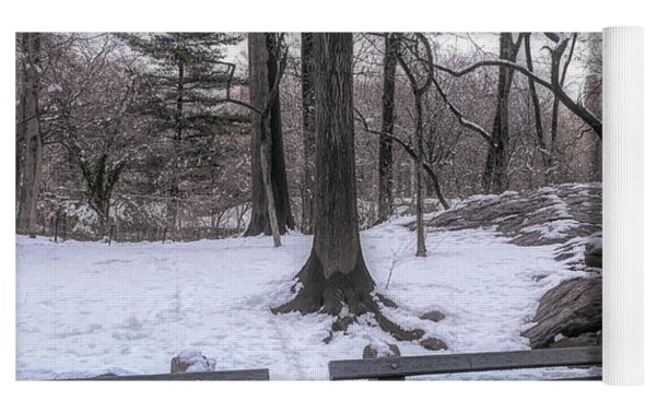 Snowy Benches Yoga Mat by Alison Frank