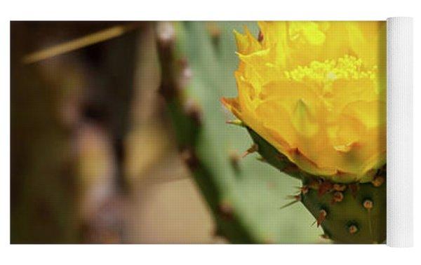 The Yellow Rose Of Arizona Yoga Mat by Rick Furmanek