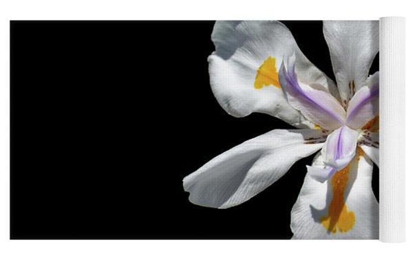 Wild Iris On Black  Yoga Mat by Alison Frank