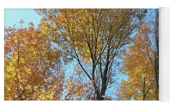 Yellowish Autumn Trees Yoga Mat by Rockin Docks