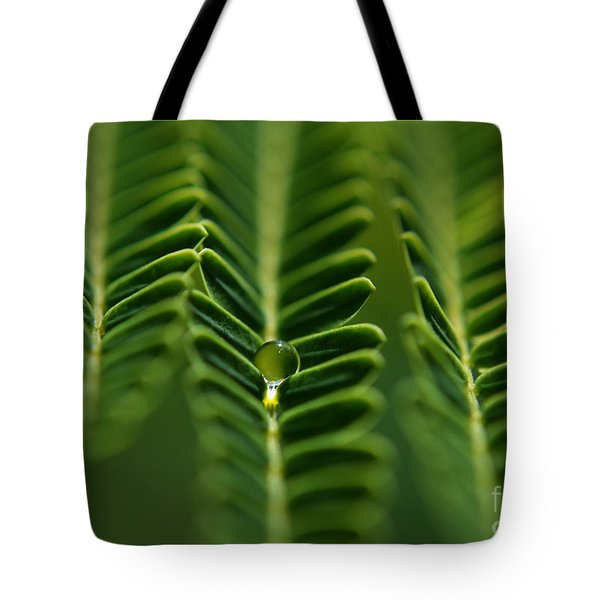 A Green Drop Tote Bag by Michelle Meenawong