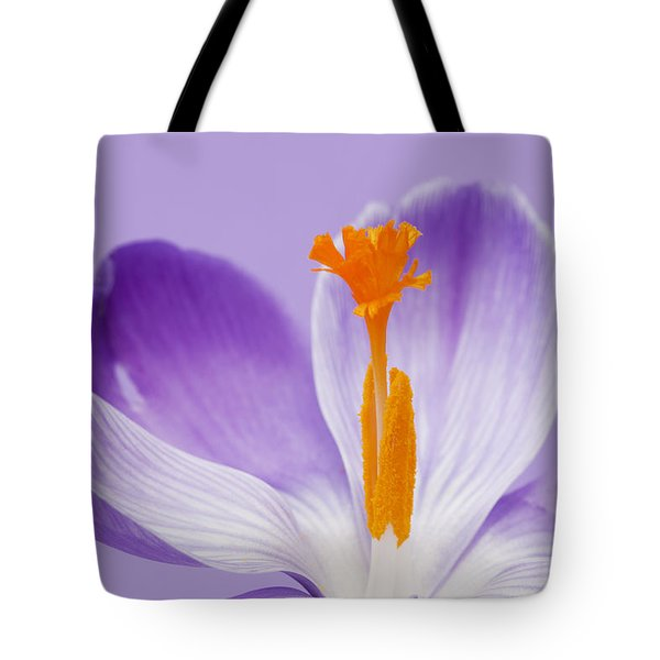 Abstract Purple Crocus Tote Bag