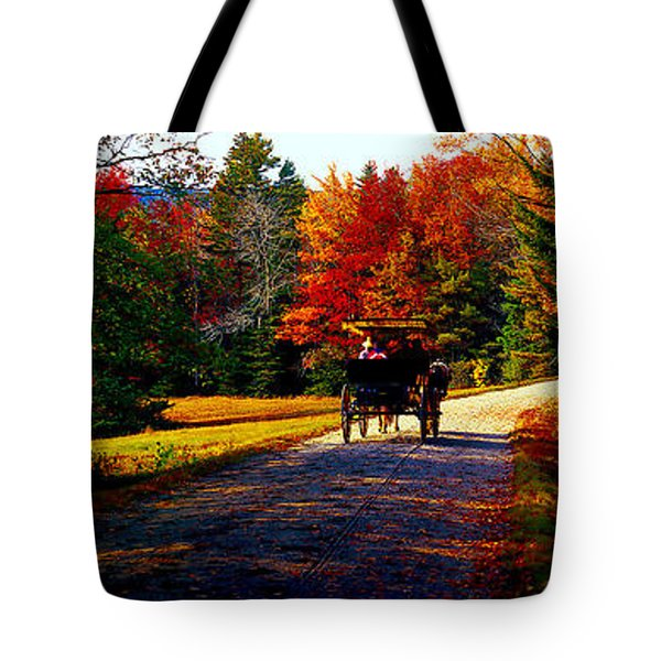 Tote Bag featuring the photograph  Acadia National Park Carriage Trail Fall  by Tom Jelen