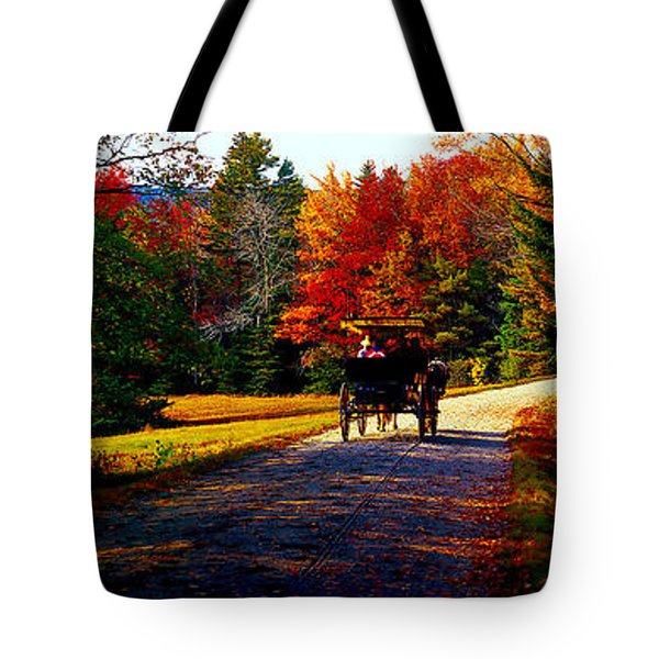 Acadia National Park Carriage Trail Fall  Tote Bag