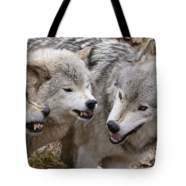 Tote Bag featuring the photograph  Alpha Displeasure 2 by Wolves Only