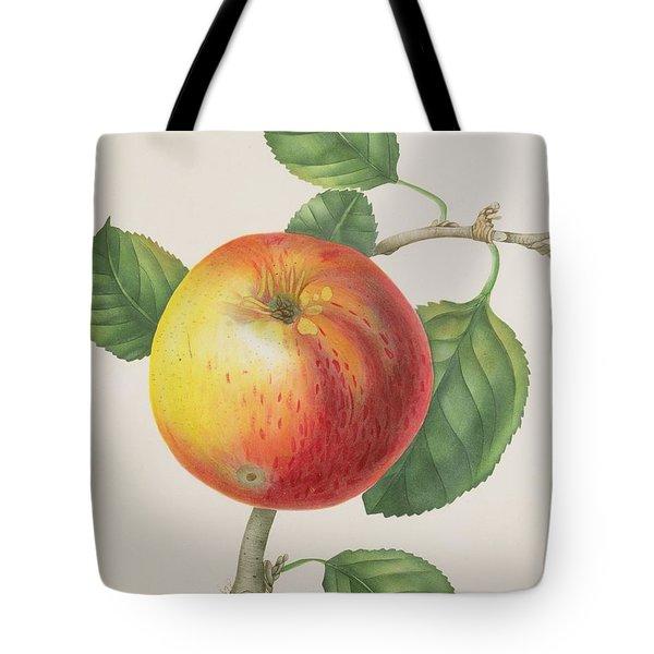 An Apple Tote Bag by Elizabeth Jane Hill
