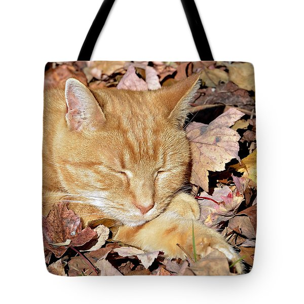 Autumn Dreaming Tote Bag