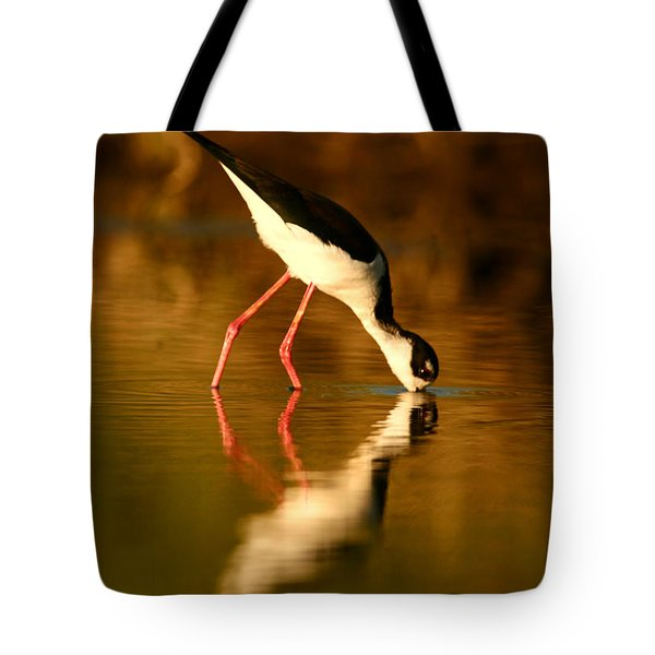 Tote Bag featuring the photograph  Black-necked Stilt Reflection by John F Tsumas