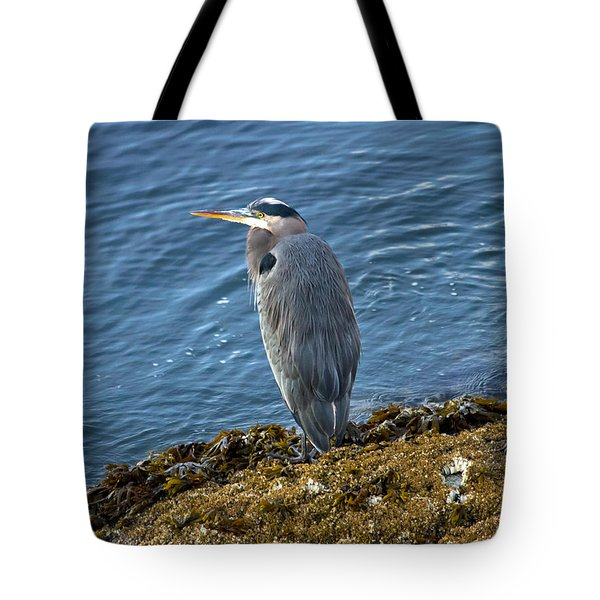Tote Bag featuring the photograph  Blue Heron On A Rock by Eti Reid