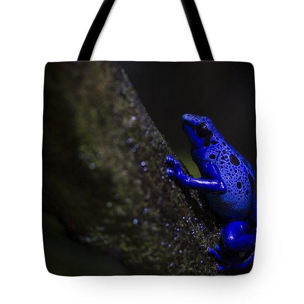 Brilliant Blue Tote Bag