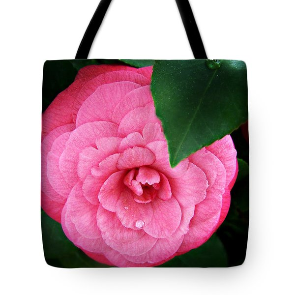 Tote Bag featuring the photograph  Camellia Japonica ' Elizabeth Weaver ' by William Tanneberger