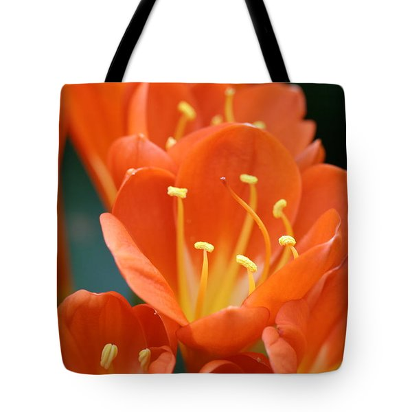 Clivia Tote Bag