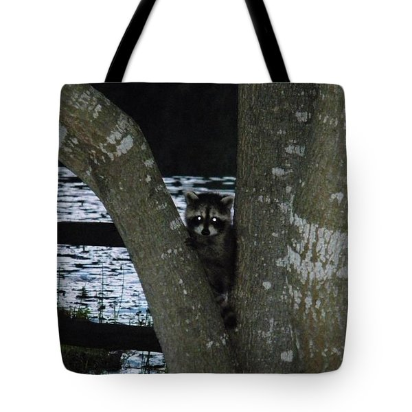 Curious  Baby Kits At Sundown Tote Bag