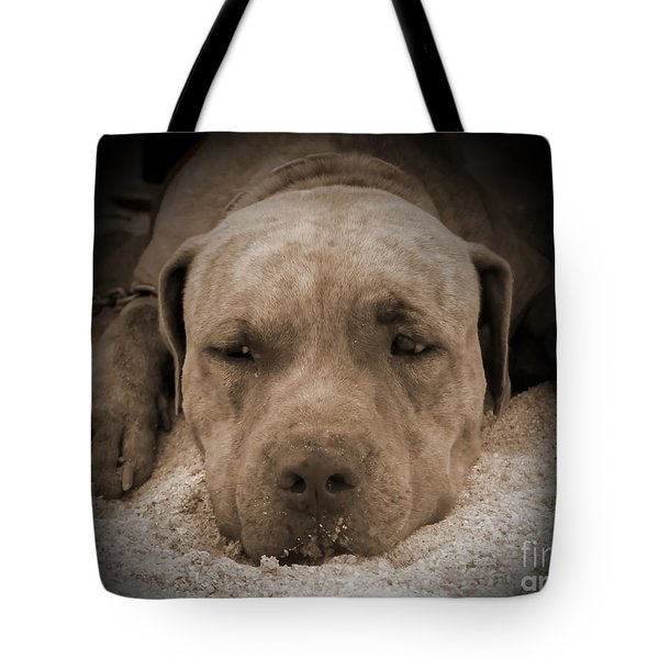 Tote Bag featuring the photograph  Don't Disturb Me by Michelle Meenawong