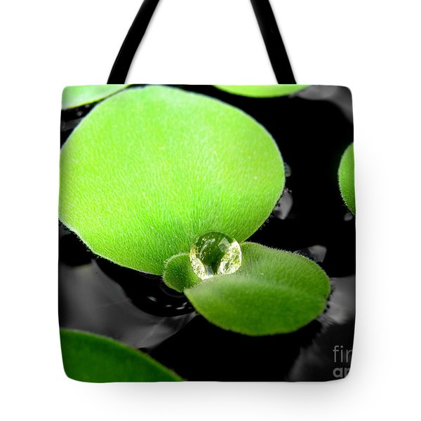 Floating Tote Bag by Michelle Meenawong