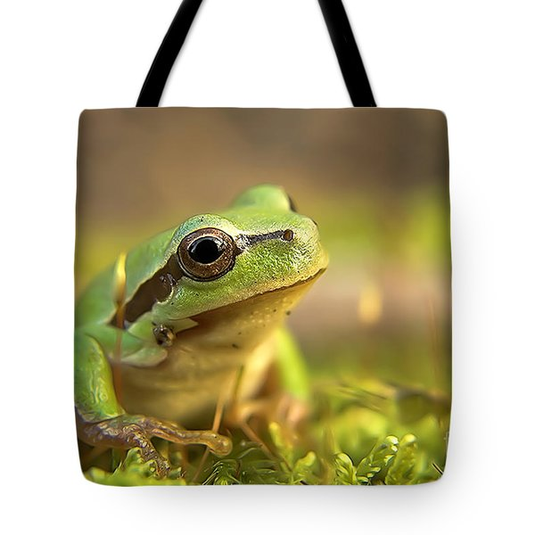 Green Tree Frog  Tote Bag by Odon Czintos