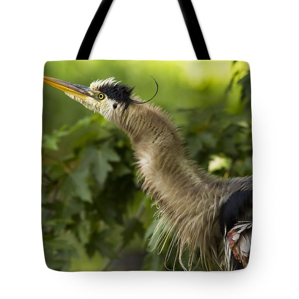 Heron In Breeding Plumage Tote Bag