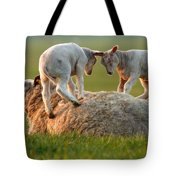 Leap Sheeping Lambs Tote Bag