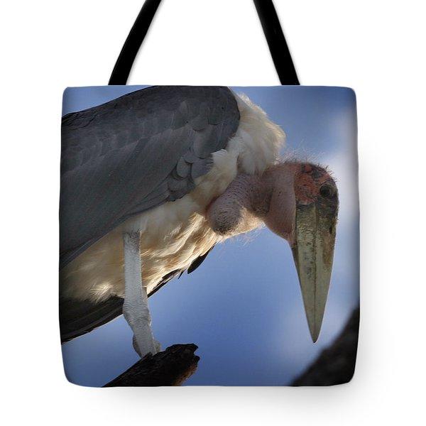 Maribou Stork Tote Bag
