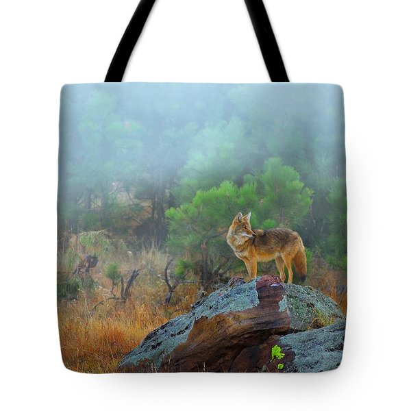 Tote Bag featuring the photograph '' Morning Patrol '' by Kadek Susanto
