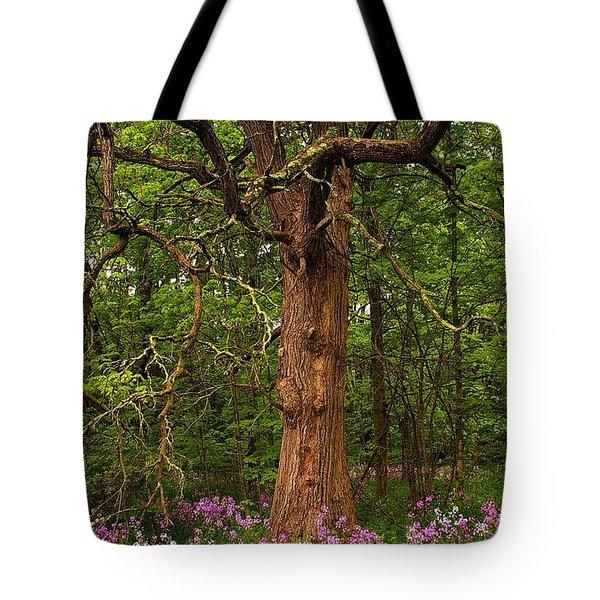 Oak Tree And Dame's Rocket Tote Bag by Randy Pollard