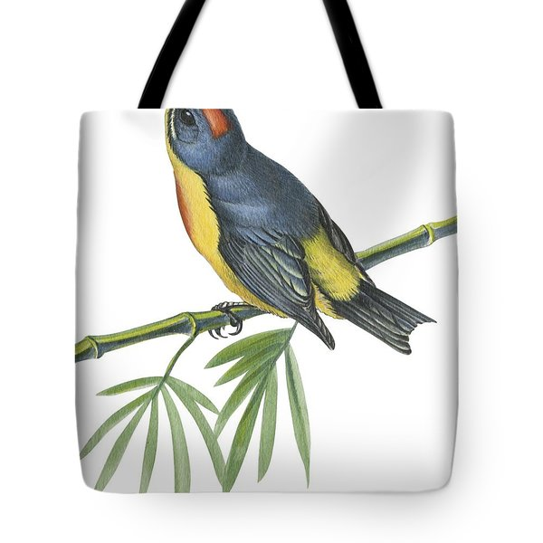 Philippine Flowerpecker Tote Bag by Anonymous
